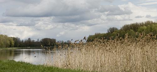 Mit dem Rad an der Donau entlang